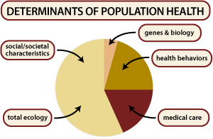 determinants-pop-health